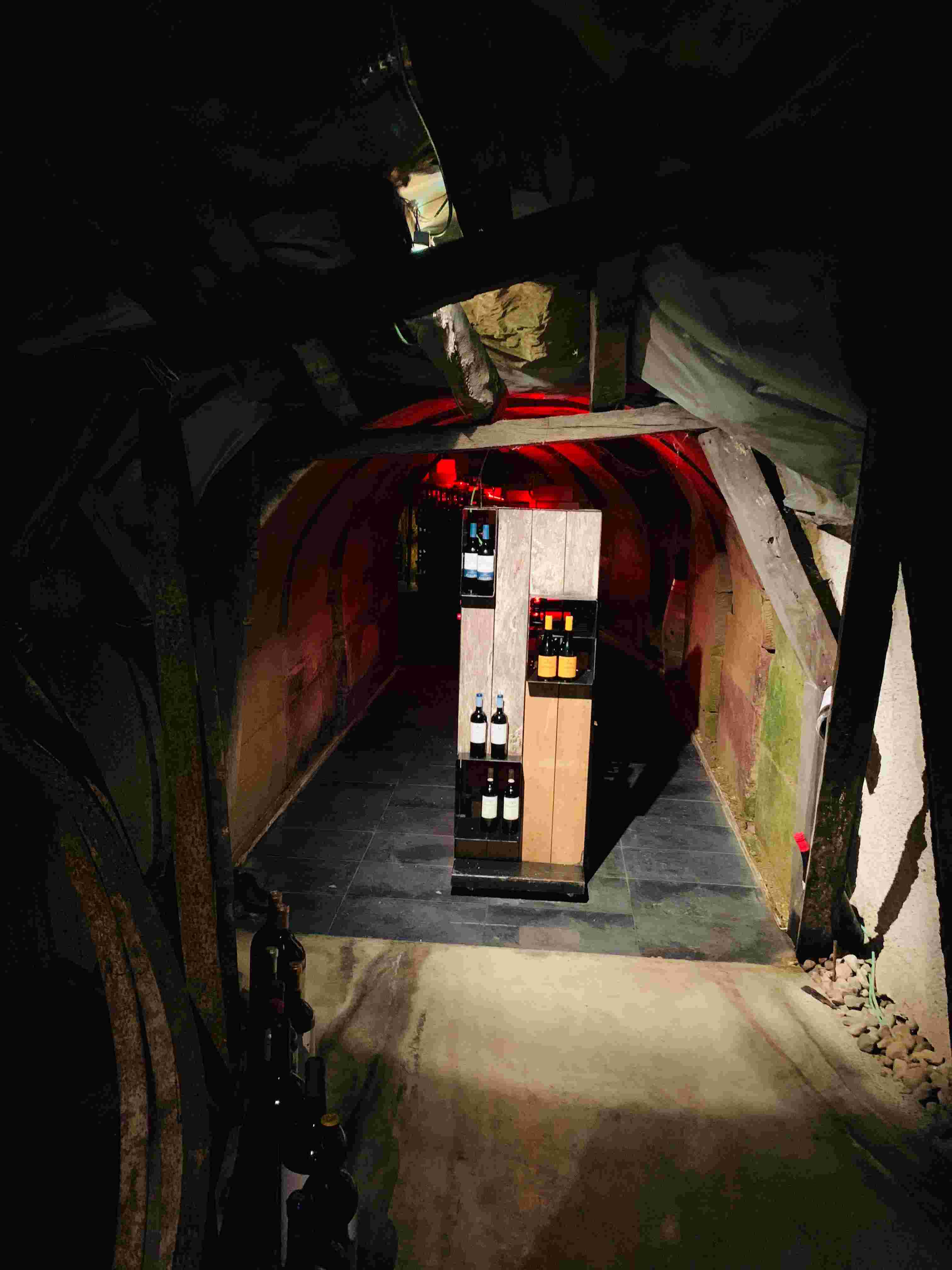 'Secret' winery visit in Basque Country
