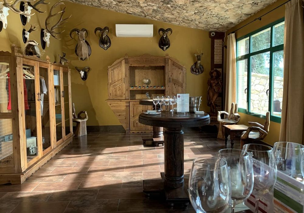 img/gastronomic-experience-alicante/gastronomic-tours-alicante6.jpg
