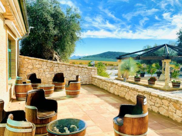 uploads/5f6c613e34ba2415be2c1650/visit-to-alicante-denia-paella-gastroandcult3.png