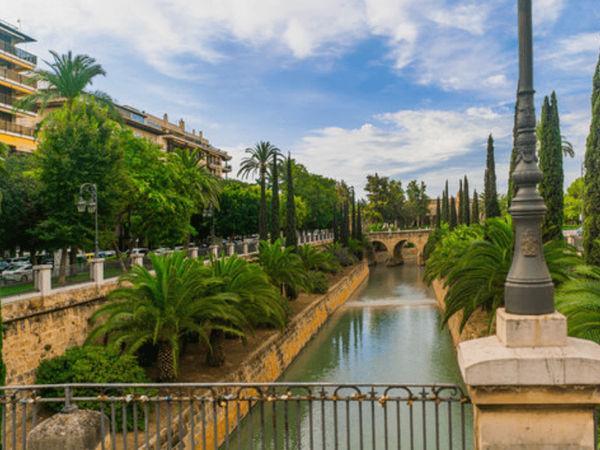 uploads/60d463bf3200bb0af774f9e0/Gastro_Cult_Majorca_Exclusive_City_Tour_3.png