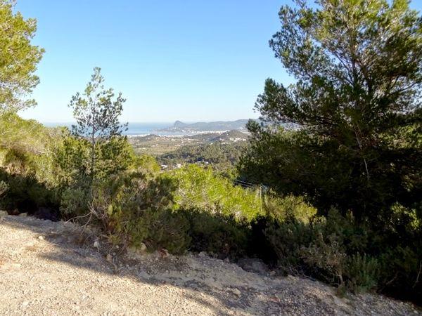 uploads/60d46bf28f16ef0aec22482e/Ibiza_Countryside_Hike_Private_Tour_2.jpg