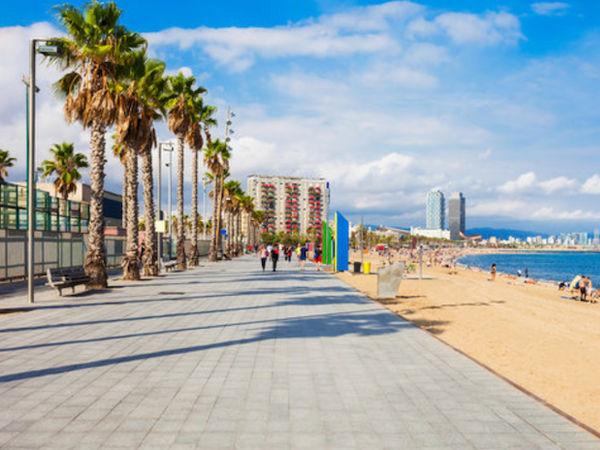 uploads/60d58b4b77579314b5e5fcf9/barcelona-gastrocult-exclusive-experiences-spain9.png