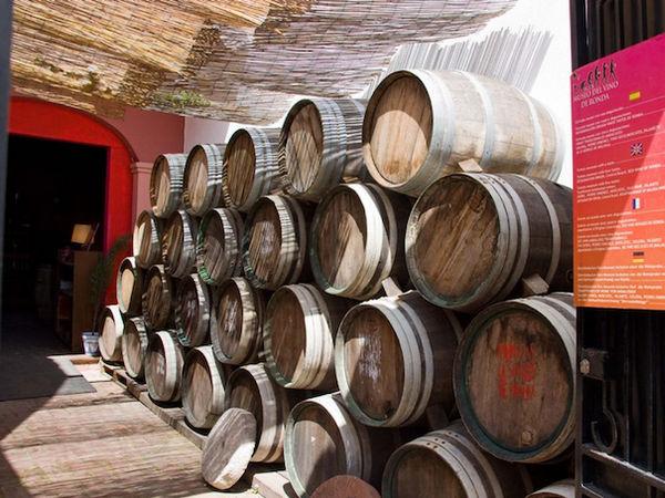 uploads/60d99422c2b3e47954bc6739/Costa_del_Sol_Ronda_and_Winery_1.png