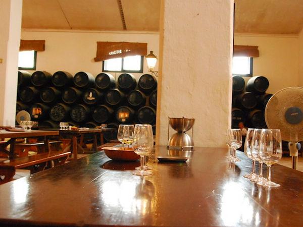 uploads/60d99422c2b3e47954bc6739/Costa_del_Sol_Ronda_and_Winery_3.png