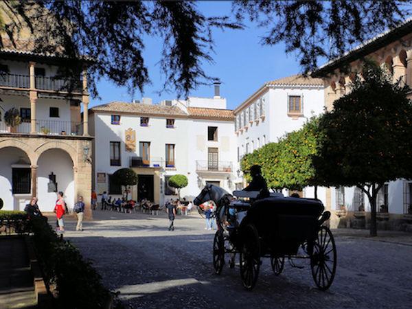 uploads/60d99422c2b3e47954bc6739/Costa_del_Sol_Ronda_and_Winery_8.png