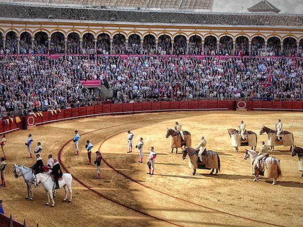 uploads/60d99490c2b3e47954bc673a/Costa_del_Sol_Excursion_Seville_8.png