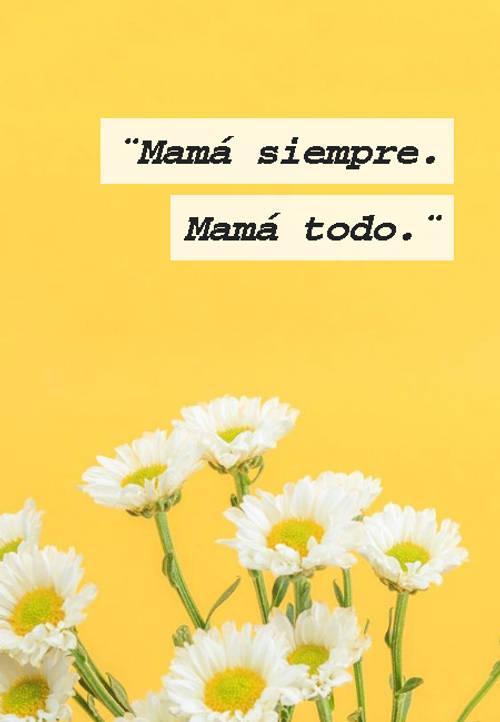 Frases para el Día de la Madre - ¨Mamá siempre.   Mamá todo.¨