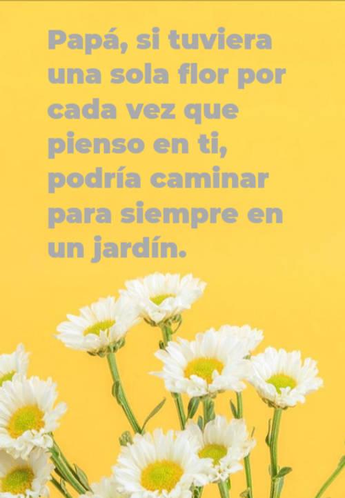 Papá, si tuviera una sola flor por cada vez que pienso en ti, podría caminar para siempre en un jardín.