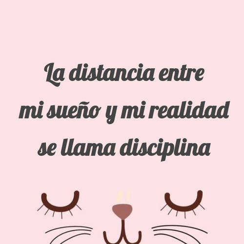 Frases de Liderazgo - La distancia entre mi sueño y mi realidad se llama disciplina