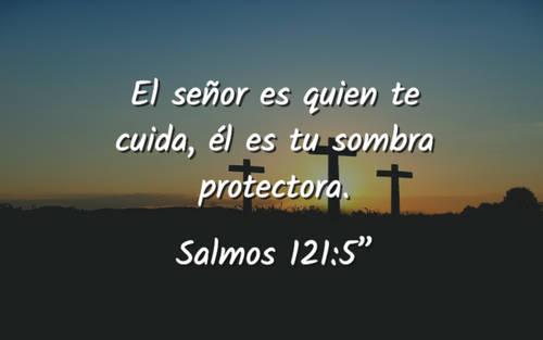 """El señor es quien te cuida, él es tu sombra protectora. Salmos 121:5"""""""
