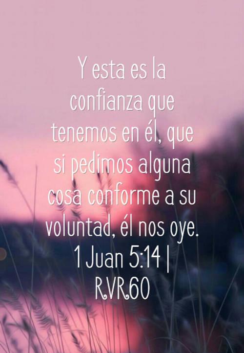 Y esta es la confianza que tenemos en él, que si pedimos alguna cosa conforme a su voluntad, él nos oye. 1 Juan 5:14 | RVR60