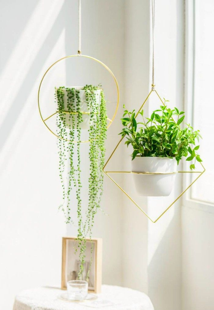 2 Pcs Plant Hanger A Diamond A Circle Shape Metal Hanging Planter Modern Home Decor Fits Large 6 Inch Planter Gold - 20 stylish ideas for decorating your small space with plants