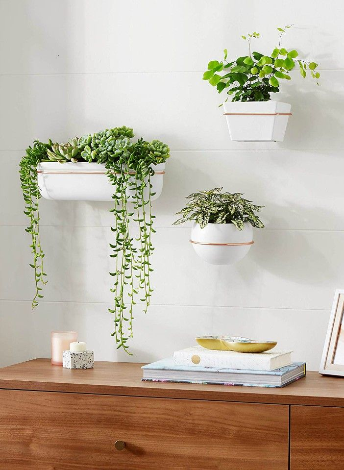 AmazonBasics Wall Planter Round White Copper 3 Pack - 20 stylish ideas for decorating your small space with plants