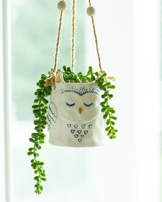 Diona Ceramic Hanging Planter - 20 stylish ideas for decorating your small space with plants