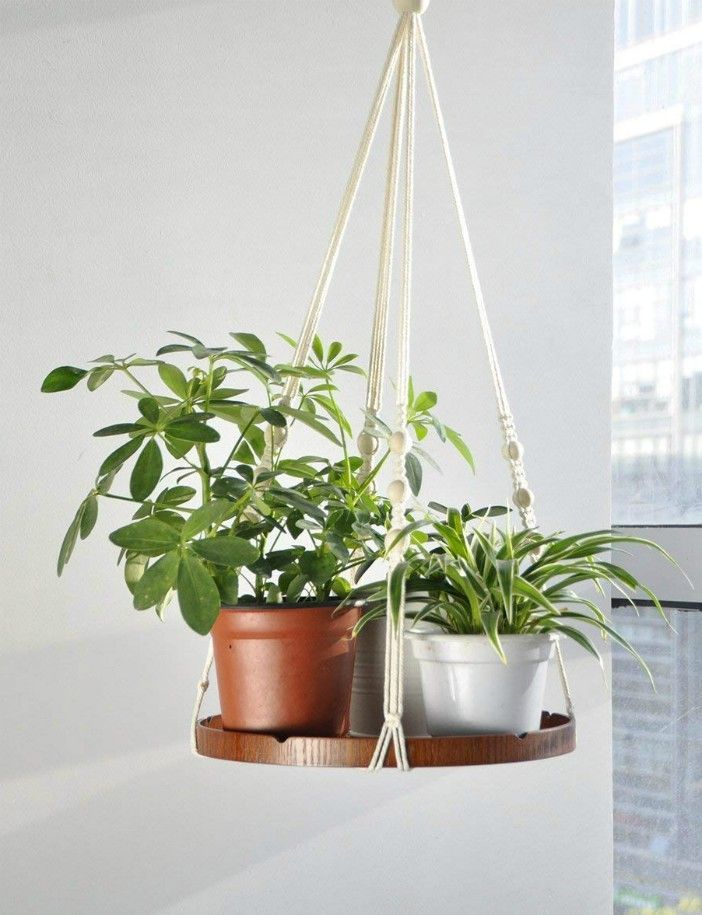 20 Stylish Ideas For Decorating Your Small Space With Plants Living In A Shoebox
