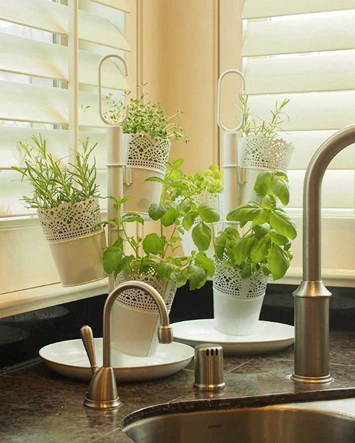 cocyard - 20 stylish ideas for decorating your small space with plants