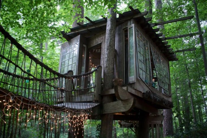 Secluded Inner Tree House (7)