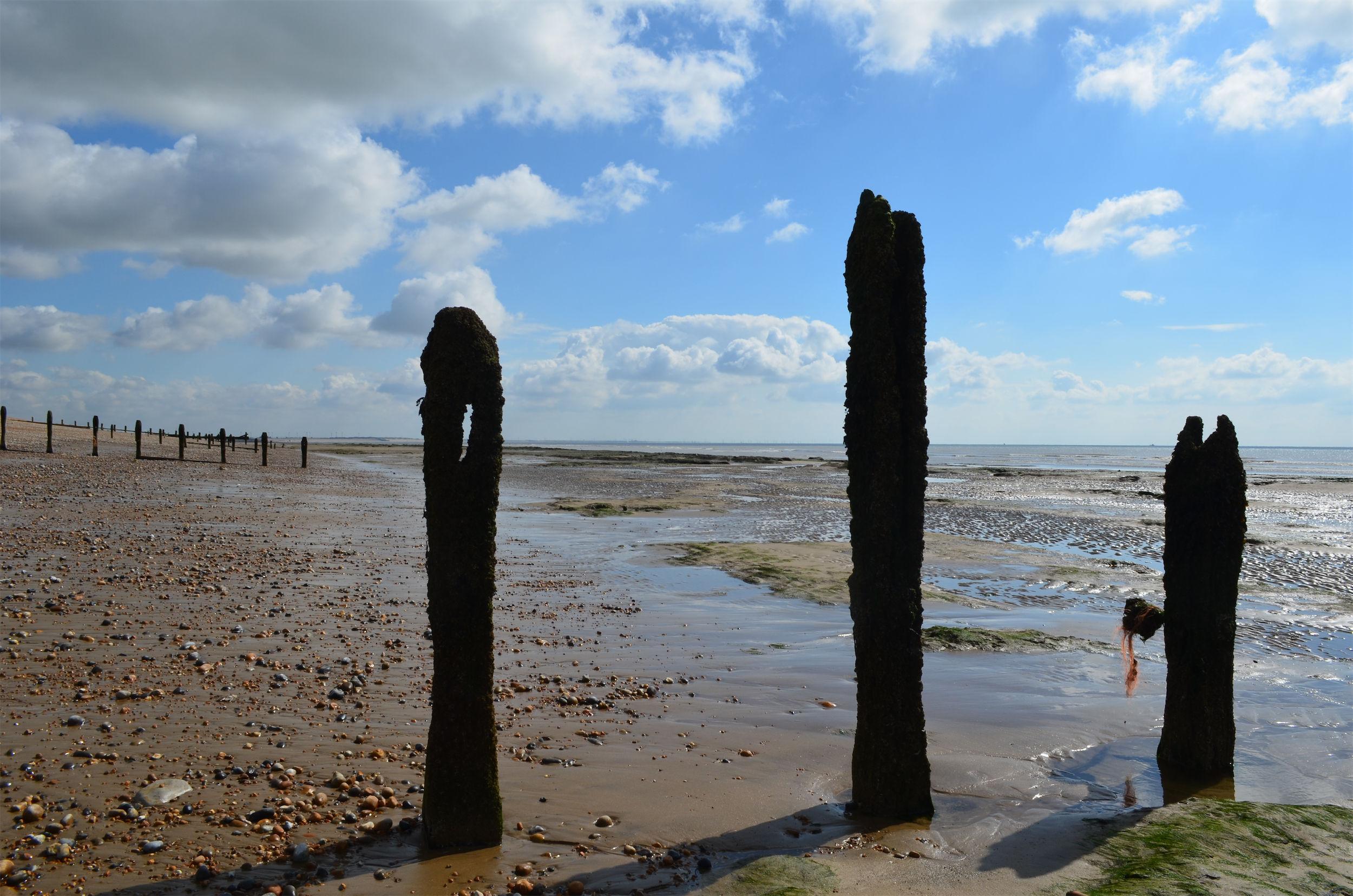 Pett Level Beach (100816)_0104.JPG