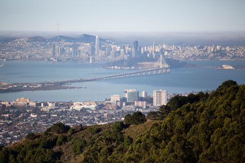 East Bay (long): East Bay Skyline Trail