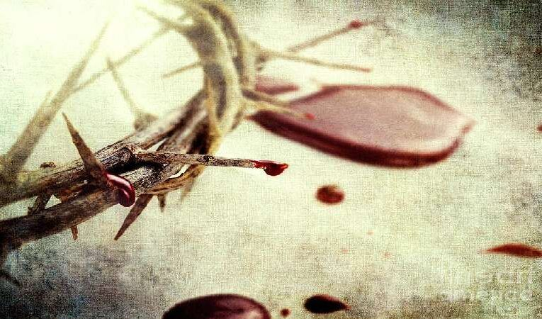 இயேசு கிறிஸ்துவின் இரத்தம் எப்படிப்பட்டது?