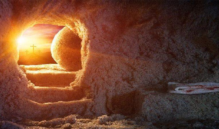 இயேசுவின் உயிர்தெழுதலின் செய்தி :  யாரை தேடுகிறாய்?