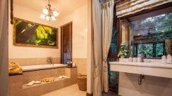 VS1 VS1-20.Separate-bath-and-shower-in-master-bedroom.jpg