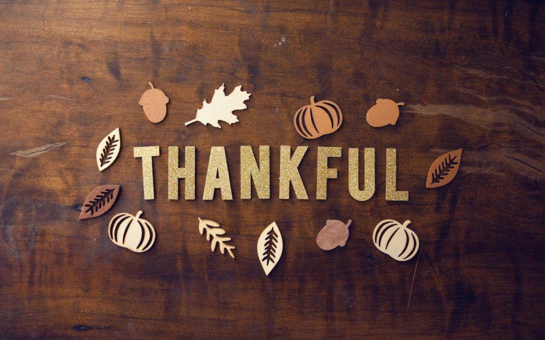 Sanctuary Inn Newsletter: We're grateful for you!
