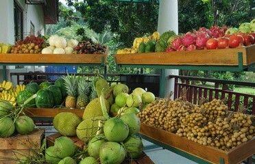 Discover Kuala Selangor 3
