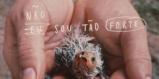 Marcela Taís lança clipe e finaliza seu terceiro álbum - Não Sou Tão Forte