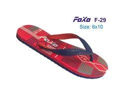 FOXO 021