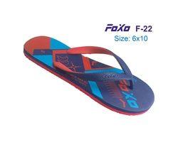 FOXO 022
