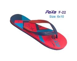 FOXO 026