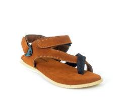 Shoegaro 275