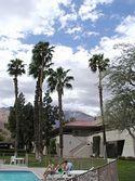 Palm Springs Condo - Palm Springs Vacation Rental condo