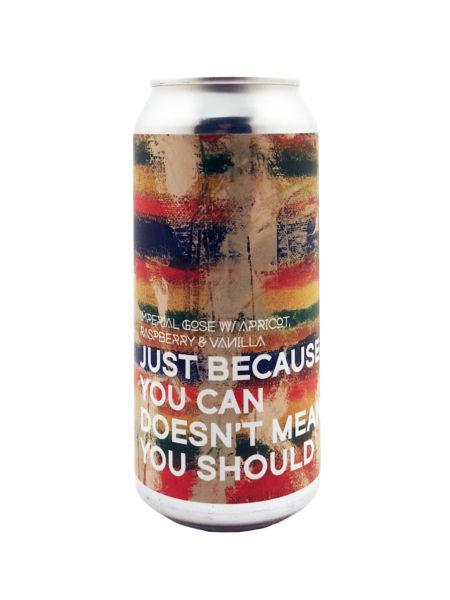 Just Because You Can, Doesn't Mean You Should Boundary Brewing