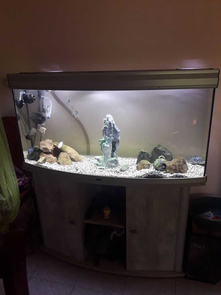 Aquarium + meuble