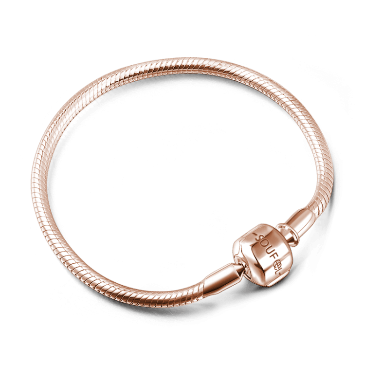 Charms Européen Plaqué argent pour bracelet serpent 9 Modèles au choix