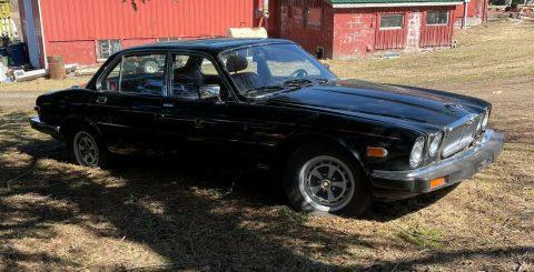 1984 Jaguar XJ6 for sale