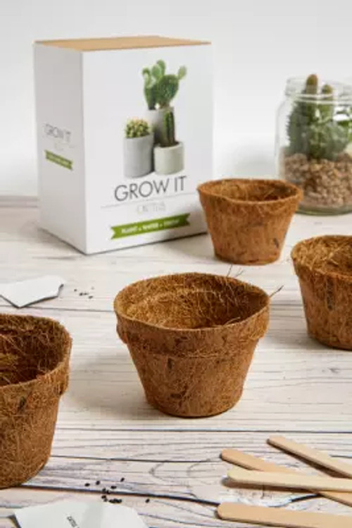 Grow It Bonsai Tree Kit Assorted All At Urban Outfitters Compare Highcross Shopping Centre Leicester
