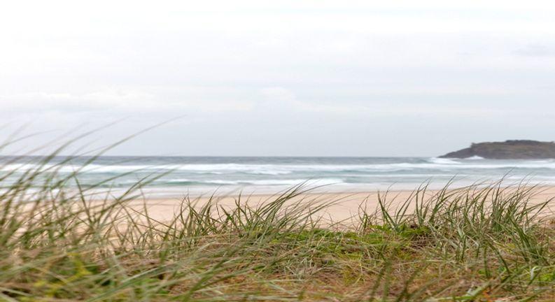 Surf Life Saving Draw 193 Photo