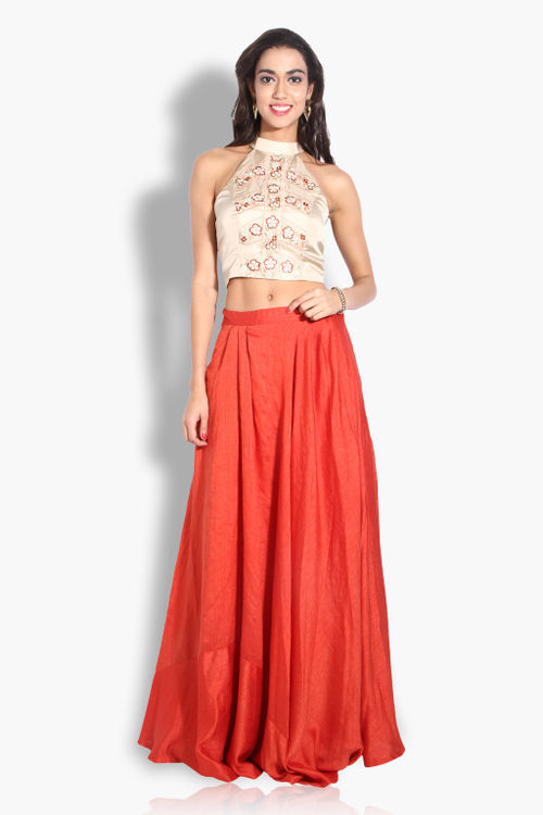 Lehenga skirt and crop top