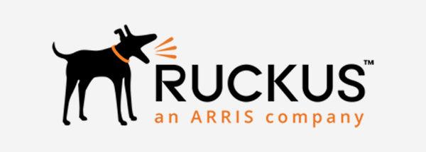 Ruckus Access Points Zone Director Rentals