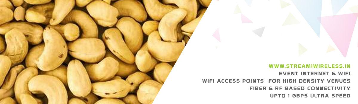 High Speed Event Temporary Internet, Wifi & IT Infrastructure Service Provider mangaluru
