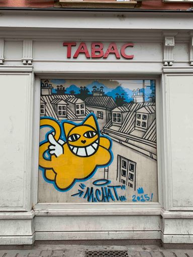 Mr Chat Strasbourg