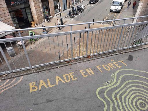 Balade en forêt france-pays-de-la-loire-graffiti