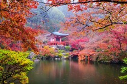 Honeymoon Destinations for Outdoor Enthusiasts: Japan