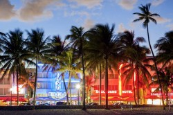 Destination Weddings: Miami, Florida