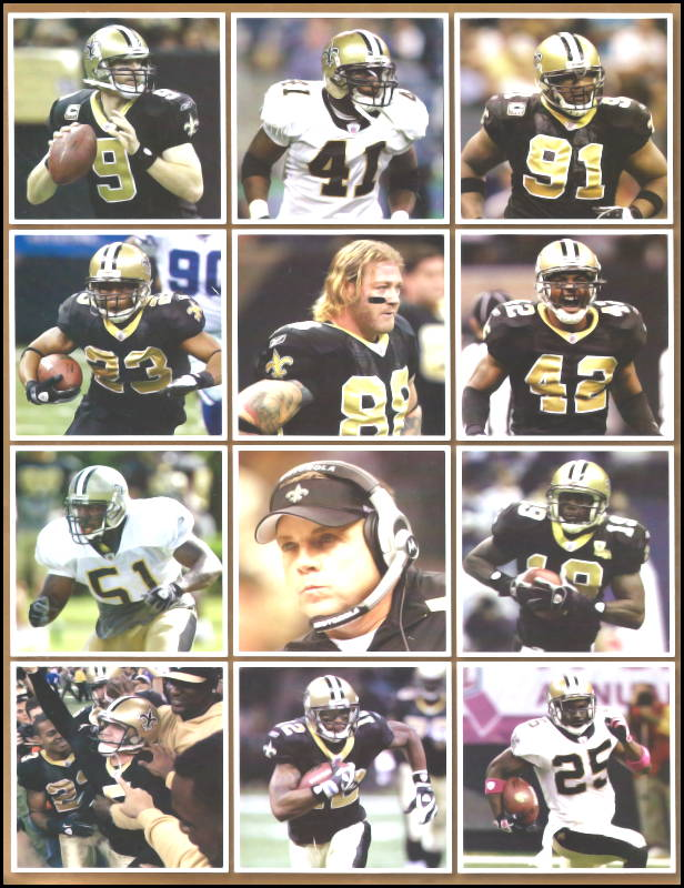 New Orleans Saints Players of 2009