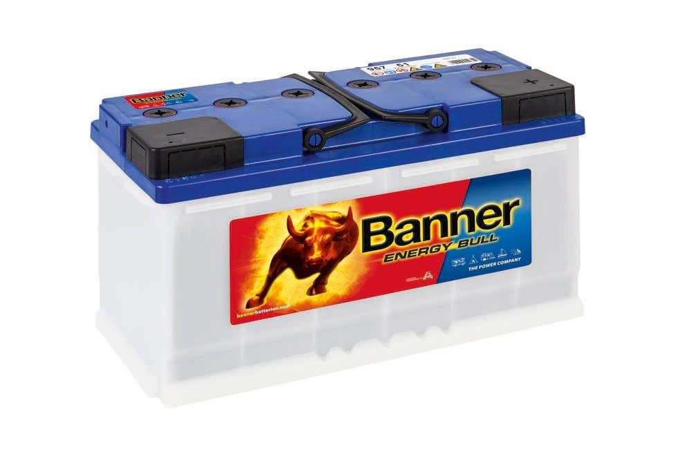 95751 Batterie Banner Décharge Lente 12V 100/110Ah