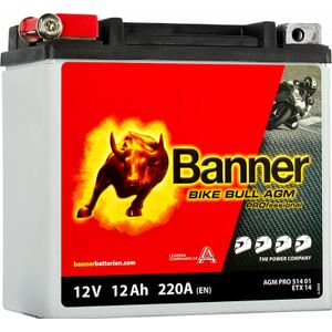 YTX14-BS Compatible Banner Bike Bull AGM PROfessional Battery (51401)